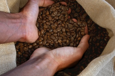 Photo of coffee beans in burlap bag